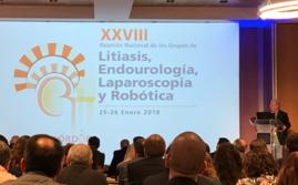 XXVIIIª Reunión de los Grupos de Litiasis y de Endourología, Laparoscopia y Robótica