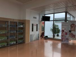 Instalaciones del CCMI. Cáceres 1